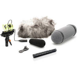 DPA Microphones 4017C-R Compact Shotgun Microphone with Rycote Windshield