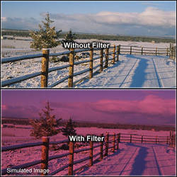 "Tiffen 6 x 6"" 2 Cranberry Solid Color Filter"
