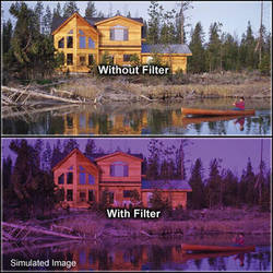 "Tiffen 6 x 6"" 2 Grape Solid Color Filter"