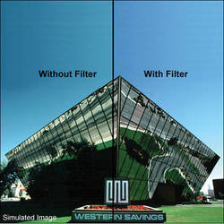 """LEE Filters 4x4"""" 82 Color Conversion Resin Filter"""