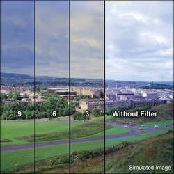 """LEE Filters 3x3"""" Combination 85 Amber / ND (ND) 0.6 Polyester Filter"""
