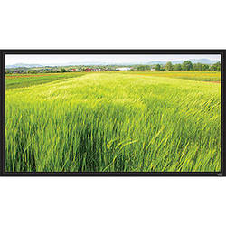 "Vutec ELF050-080MW Elegante Fixed Frame 50 x 80"" Screen"