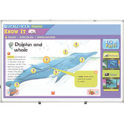 Best Rite 2G2KJ-25 5 x 8' Interactive Projector Board with Brio Trim and Gloss White Surface