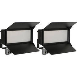 ARRI LoCaster 2 Plus AC LED Double Kit