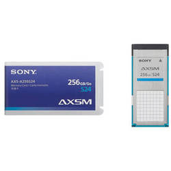 Sony AXS Memory A Series Card (256GB, 2.4 Gbps)