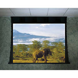 "Draper 118417U Ultimate Access/Series V 60 x 96"" Motorized Screen with LVC-IV Low Voltage Controller (110V)"
