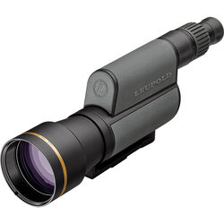 Leupold GR 20-60x80 Spotting Scope with Impact Reticle (Straight Viewing, Shadow Gray)