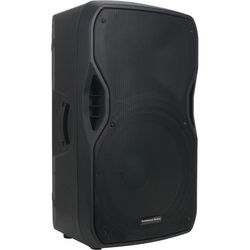 "American Audio ELS GO 15BT Bluetooth Speaker (15"")"