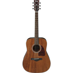 Ibanez AW54 Artwood Series Acoustic Guitar (Open Pore Natural)