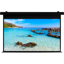 """HamiltonBuhl HBS4580BK 45 x 80"""" Electric Projection Screen"""