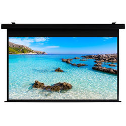 """HamiltonBuhl HBS74131BK 74 x 131"""" Electric Projection Screen"""
