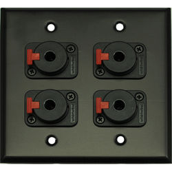 """Whirlwind 2-Gang Wall Mounting Plate with 4 Whirlwind WCQF 1/4"""" Jacks (Black Finish)"""