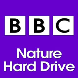 Sound Ideas BBC Nature Sound Effects Library Hard Drive for Mac (500GB)