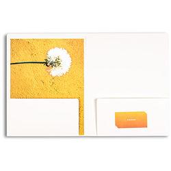 Pina Zangaro Folders (25-Pack, White)