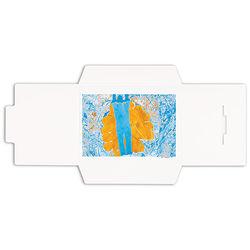 Pina Zangaro Open-Flap Folders (3-Pack, White)