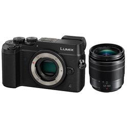 Panasonic Lumix DMC-GX8 Mirrorless Micro Four Thirds Digital Camera with 12-60mm Lens Kit (Black)
