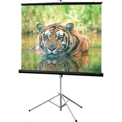 "Draper Consul 60"" x 60"" Projection Screen (Matte White)"
