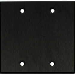 """Whirlwind 2-Gang Blank Wall Mounting Plate (.125"""" Black Anodized Aluminum Finish)"""