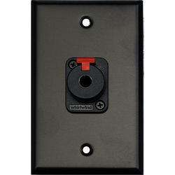 """Whirlwind 1-Gang Wall Mounting Plate with 1 Whirlwind WCQF 1/4"""" Jack (Black Finish)"""