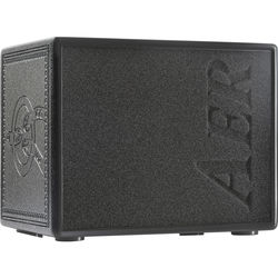 AER Tommy Emmanuel Signature Compact 60 CGP 60W Combination Amplifier for Acoustic Guitars