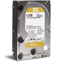 "WD 1TB Gold 7200 rpm SATA III 3.5"" Internal Datacenter HDD"
