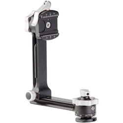 Really Right Stuff PG-01 Compact Pano-Gimbal Head with Lever-Release Clamp and Leveling Base