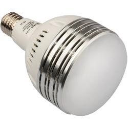 Raya 60W LED Daylight Studio Bulb