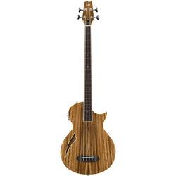 ESP LTD TL-4Z Thinline Series Fretless Acoustic/Electric Bass (Natural Gloss)
