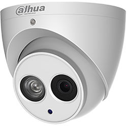 Dahua Technology Pro Series 2MP Outdoor Network Eyeball Dome Camera with Night Vision and 3.6mm Lens
