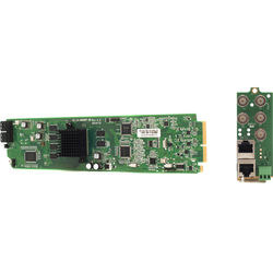 Apantac Cascadable Video Quad Splitter Card and RML Rear Module Set for openGear 3.0 Frame