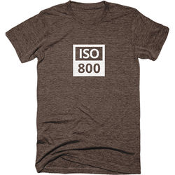 TogTees Men's ISO 800 Tee Shirt (L, Sepia)