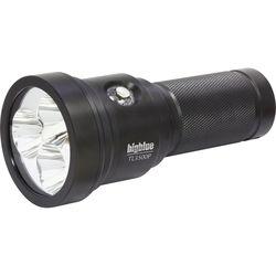 Bigblue TL3500P Technical LED Dive Light (Black)
