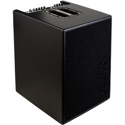 """AER 2x100W Acoustic Bass Combo Amp 2 with 4x8"""" Speakers (Black)"""