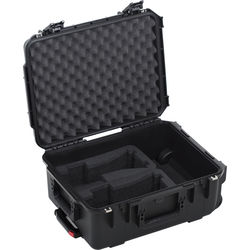 HIVE LIGHTING Hard Rolling Case for Two Wasp 100-C LED Lights (Black)