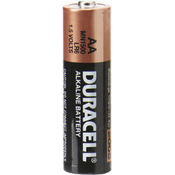 Duracell 1.5V AA Coppertop Alkaline Batteries (144-PK)