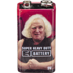 Electro-Harmonix EHX 9V Vintage Style Battery for Guitar Pedals