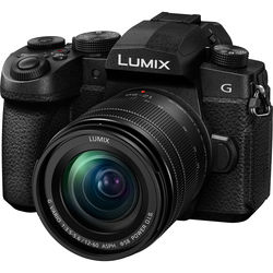 Panasonic Lumix DC-G95 Mirrorless Digital Camera with 12-60mm Lens