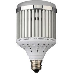 Raya LED Light Bulb (30W)