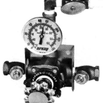 Arkay Econo Reg 1 Water Temperature Control Panel