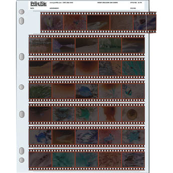 Print File Archival Storage Page for Negatives, 35mm, 7-Strips of 5-Frames (Binder Only) - 100 Pack