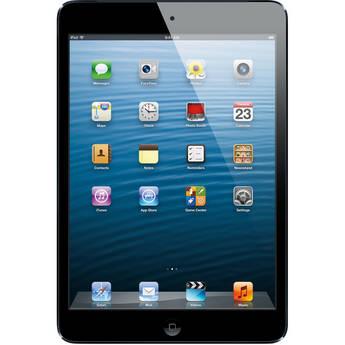 Apple 64GB iPad mini with Wi-Fi and 4G LTE (Verizon, Black & Slate)