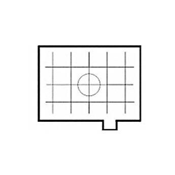 Beattie Intenscreen Grid Pentax PZ-1