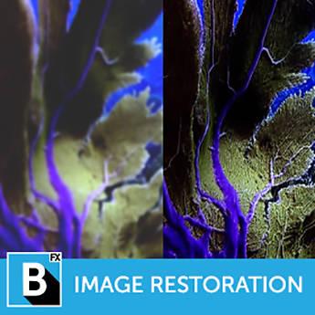 Boris FX Continuum 11 Image Restoration Unit (Upgrade, Download)