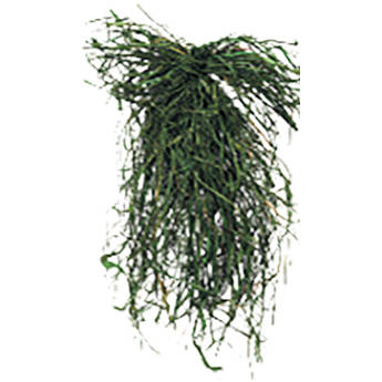 PRIMOS Final Approach Whoopgrass for Hunting Blinds (Field Green)