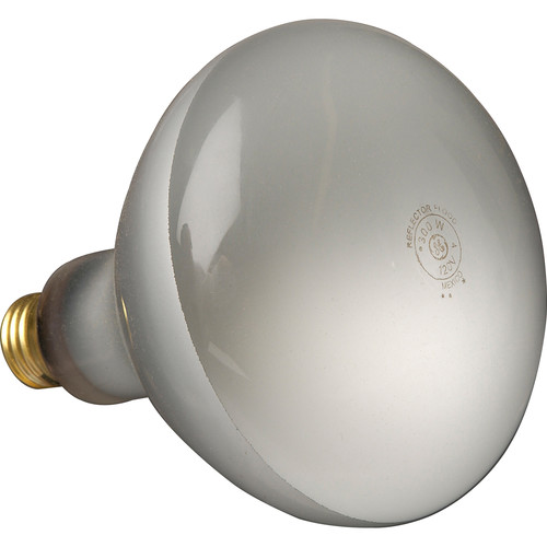 Altman 300 Watt, 120 Volt Flood Lamp