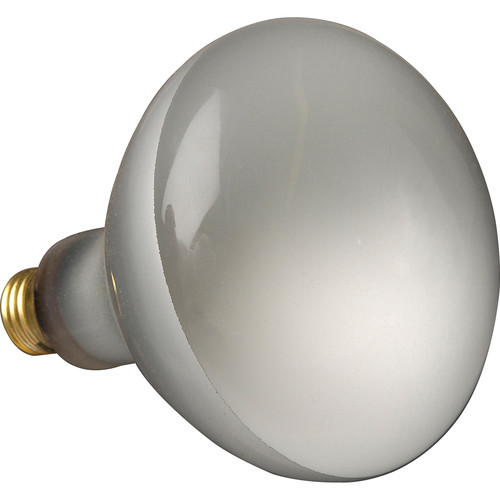 Altman 300 Watt, 120 Volt Spot Lamp