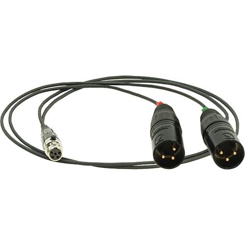 "Ambient Recording SKA-TA5 TA5F to 2 x XLR3M Adapter Cable (24"")"