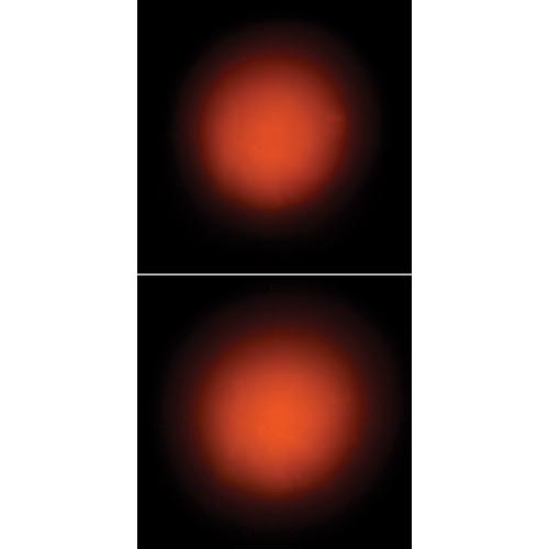 Elation Professional LSF10-24 Light Shaping Filter