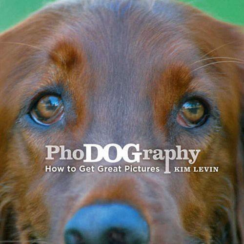 Amphoto Book: PhoDOGraphy: How to Get Great Pictures of Your Dog by Kim Levin