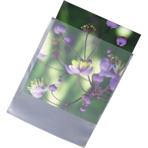 """Archival Methods High-Density Poly Envelopes - 8.25 x 10-3/8"""" 100 Pack"""